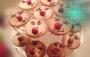 Waniliowe kruche ciasteczka zRudolfem