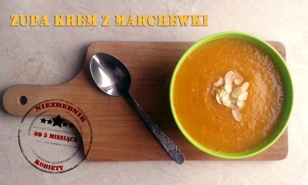 zupa krem marchewka